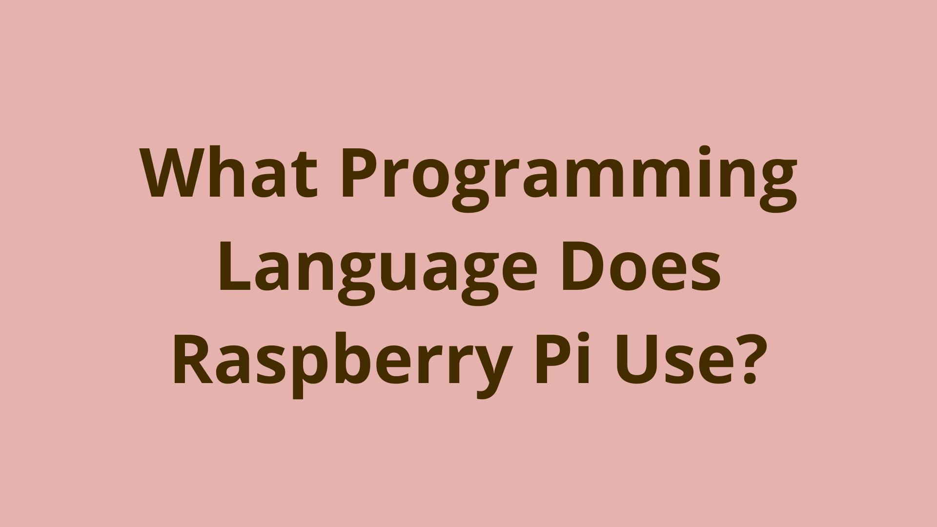 Image of What Programming Language Does Raspberry Pi Use?
